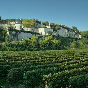 Route des Vins de Loire -300