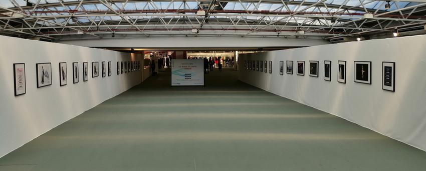 Gallerie dans le Hall 2