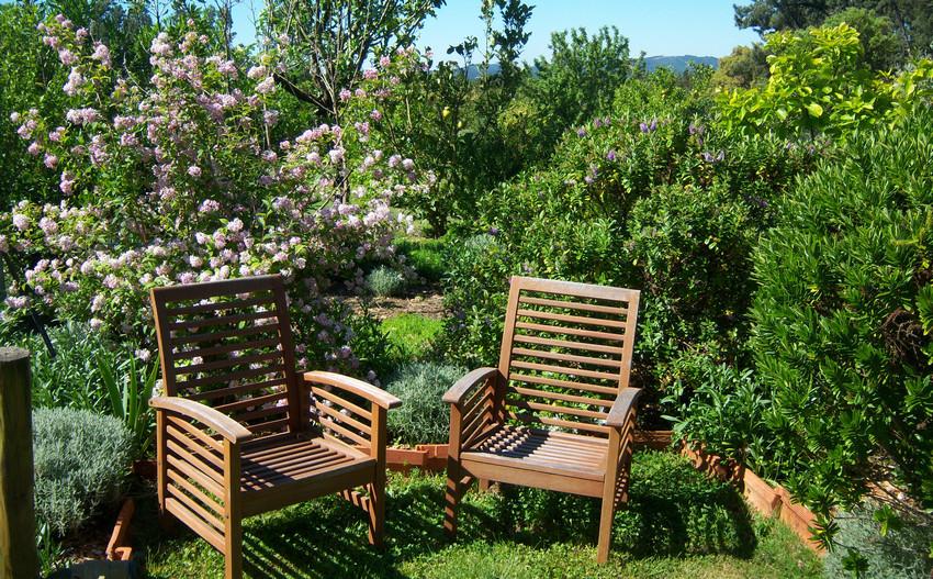 Jardins au chateau de Thoiry 1 850 450