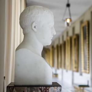 Image mise en avant Bicentenaire de Napoléon Ier 300-300-1